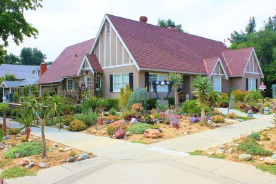 Benefits of Landscaping Using Native Plants in Phoenix, AZ